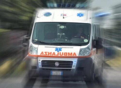 Mustapha Manneh morto sul lavoro, il boscaiolo 32enne schiacciato da un albero nel Bellunese